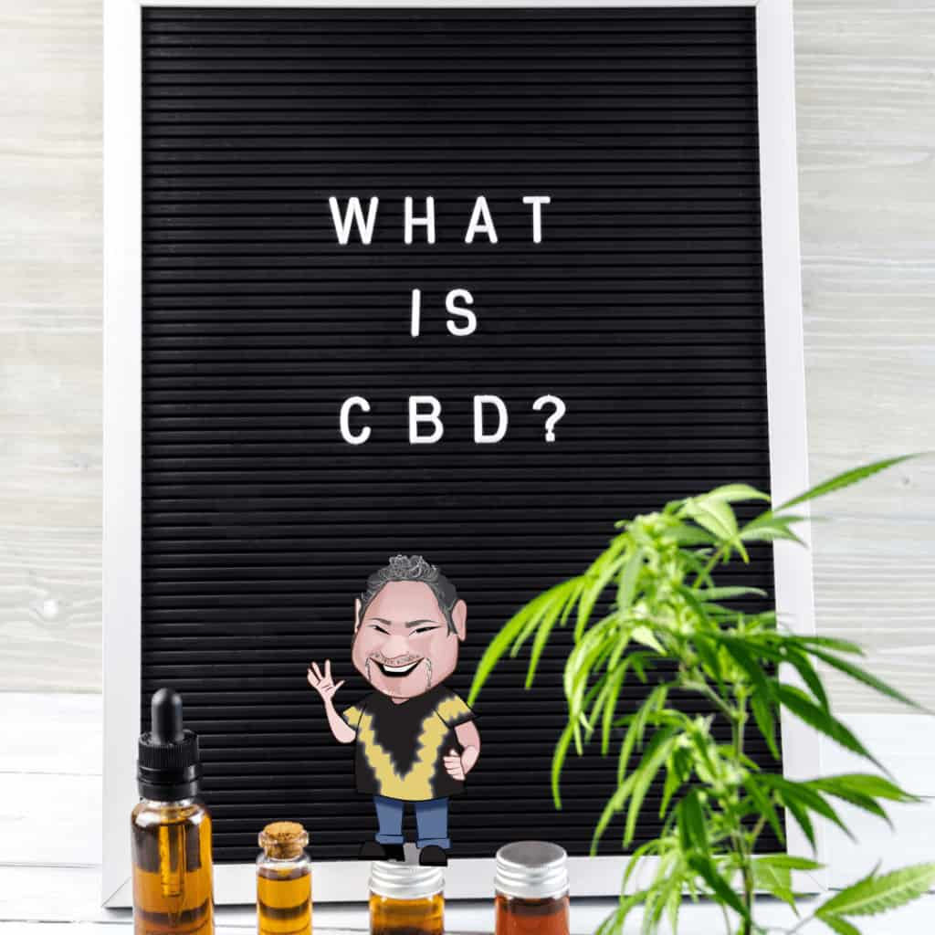 CBD Oil Can Support Your Immune System