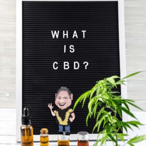 How Supplements and CBD Oil Can Support Your Immune System