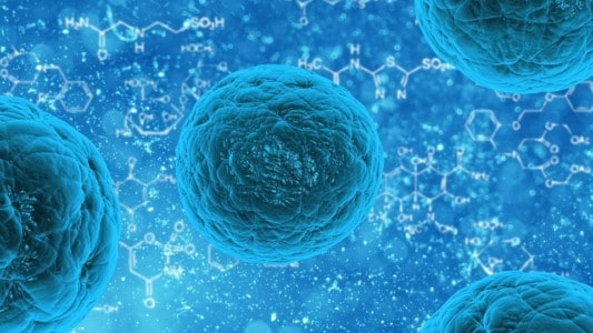 Protect Your Immune System Against the Delta Variant